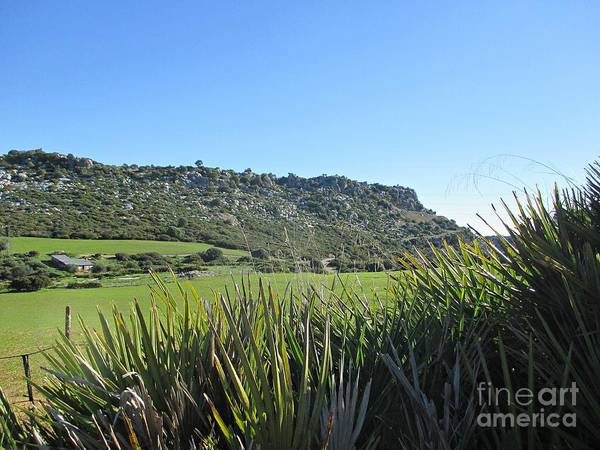 Photograph - Casares Sierra De La Utrera by Chani Demuijlder