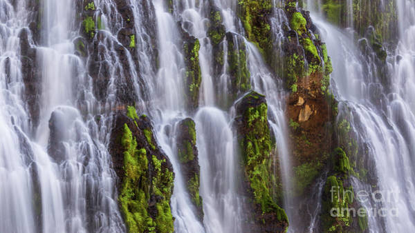 Photograph - Cascade Panoramic by Anthony Michael Bonafede