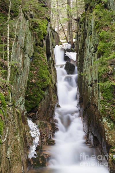 Photograph - Cascade Brook - Lincoln, New Hampshire by Erin Paul Donovan