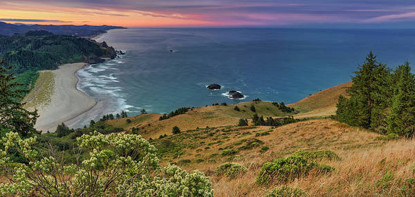 Photograph - Cascade Head by Leland D Howard