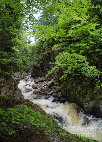 Photograph - Cascade Stream Gorge, Rangeley, Maine  -63352 by John Bald