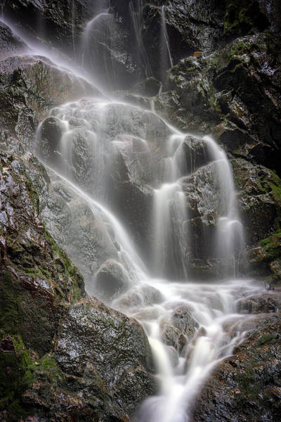 Photograph - Cascades At Angel Falls by Rick Berk