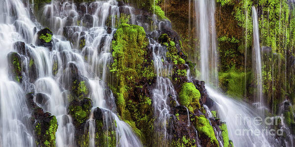 Photograph - Cascades Of Burney Falls by Anthony Michael Bonafede