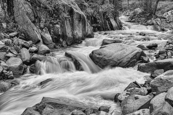 Photograph - Cascading Colorado Rocky Mountain Stream Bw by James BO Insogna