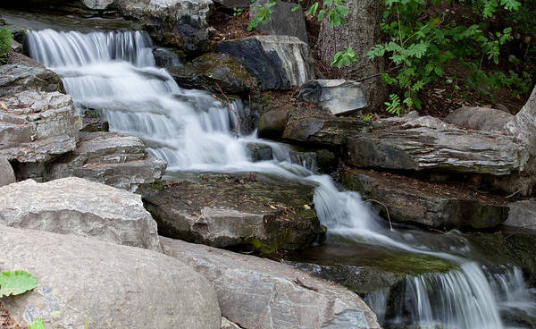 Photograph - Cascading by Fran Riley