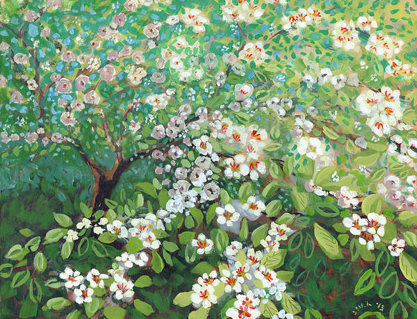 Dogwood Painting - Cascading by Jennifer Lommers