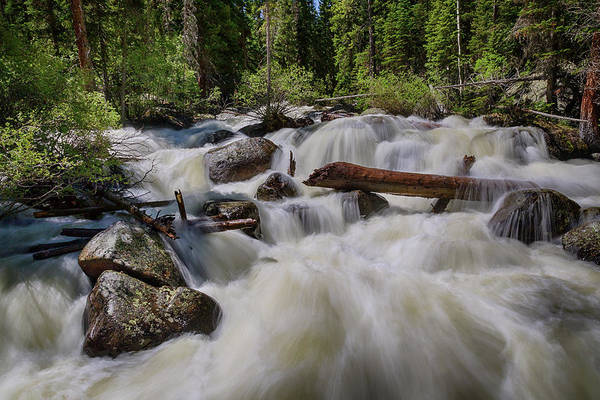 Photograph - Cascading Stream by James BO Insogna