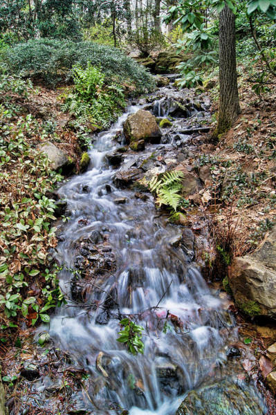 Photograph - Cascading Water by Cricket Hackmann