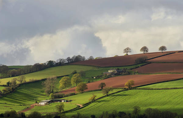 Photograph - Caseberry Downs In Devon by Pete Hemington