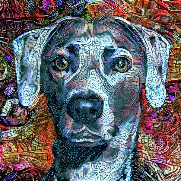 Mixed Media - Cash The Blue Lacy Dog - Cropped by Peggy Collins