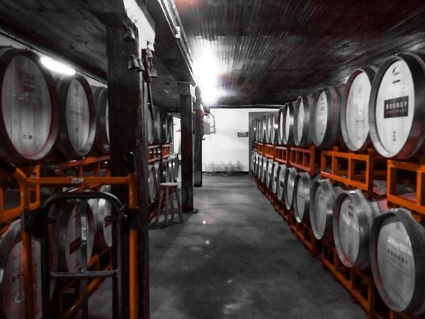 Photograph - Casks Of Wine by Chris Montcalmo