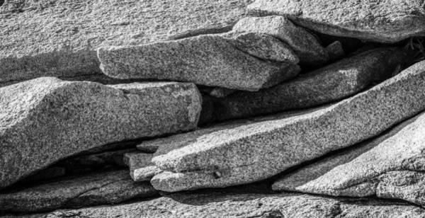 Photograph - Coastal Rock I by Robert Mitchell