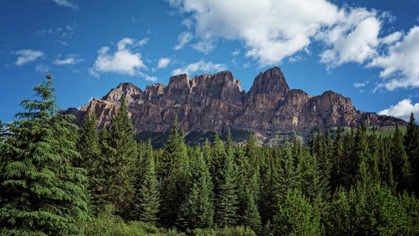 Photograph - Castle Mountain Banff by Joan Carroll