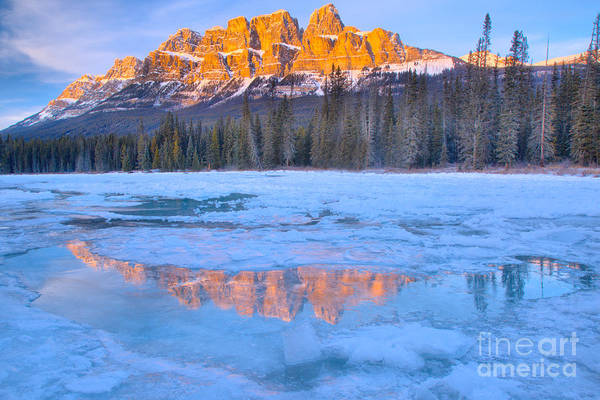 Photograph - Castle Mountain Icy Blue Reflections by Adam Jewell