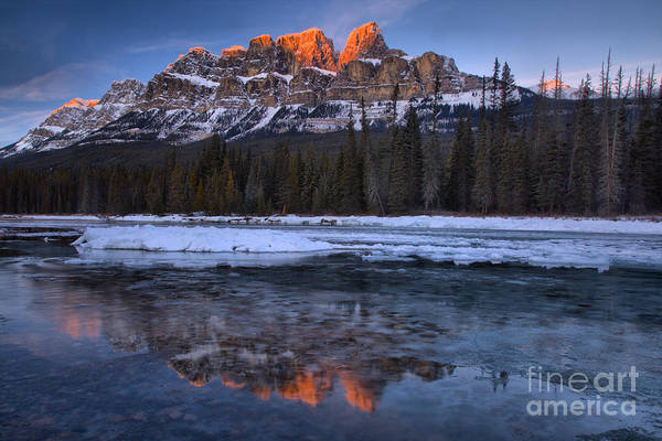 Photograph - Castle Mountain Icy Pink Reflections by Adam Jewell