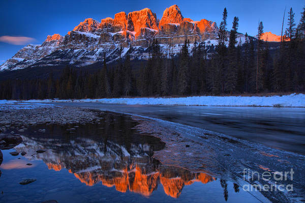 Photograph - Castle Mountain Red Tips by Adam Jewell