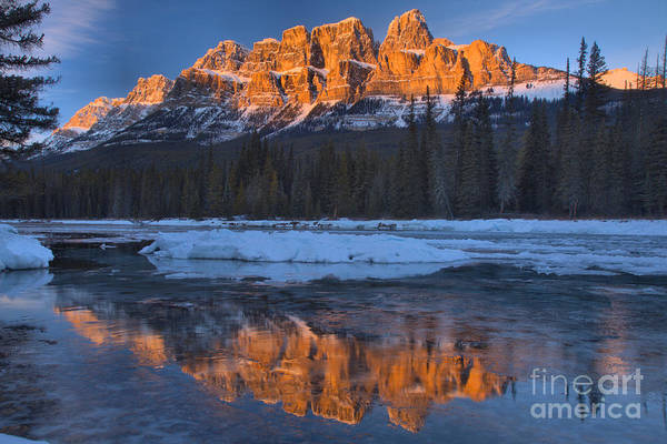 Photograph - Castle Mountain Red Winter Reflections by Adam Jewell