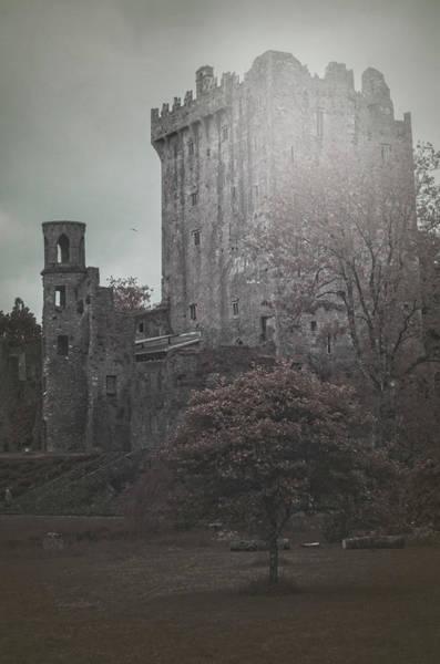 Photograph - Castle Vignette by Sharon Popek