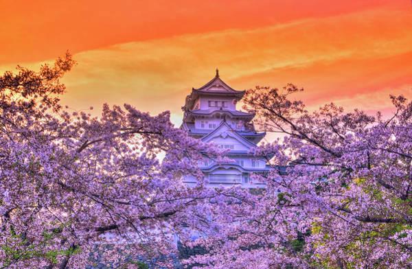 Wall Art - Photograph - Castle's Meloday by Midori Chan