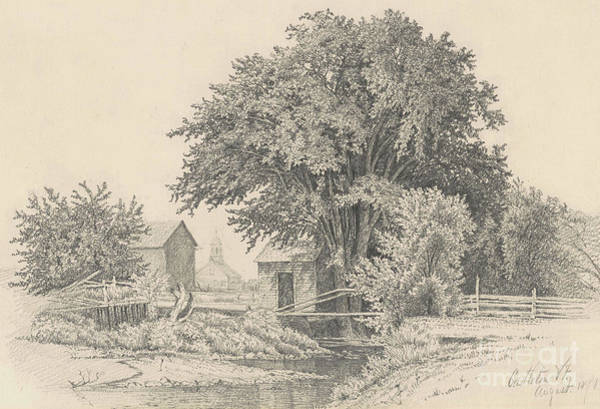 River Bank Drawing - Castleton, Vermont, 1871 by James Renwick Brevoort