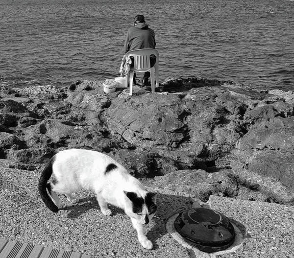 Wall Art - Photograph - Cat And Fisherman On The Rocks by Iordanis Pallikaras