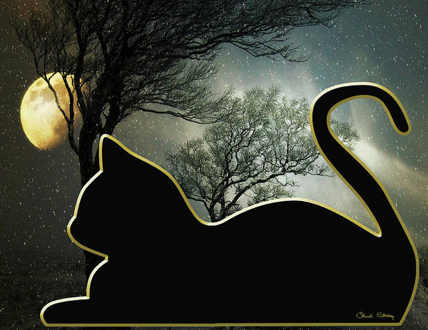 Digital Art - Cat And Moon by Chuck Staley