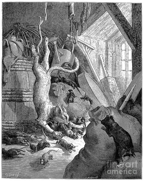 Drawing - Cat And The Old Rat by Gustave Dore