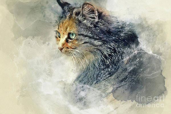 Painting - Cat Aquarelle by Dimitar Hristov