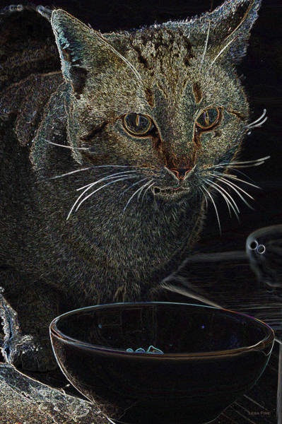 Mixed Media - Cat Art Fine Dining by Lesa Fine