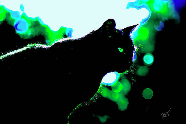 Photograph - Cat Bathed In Green Light by Gina O'Brien
