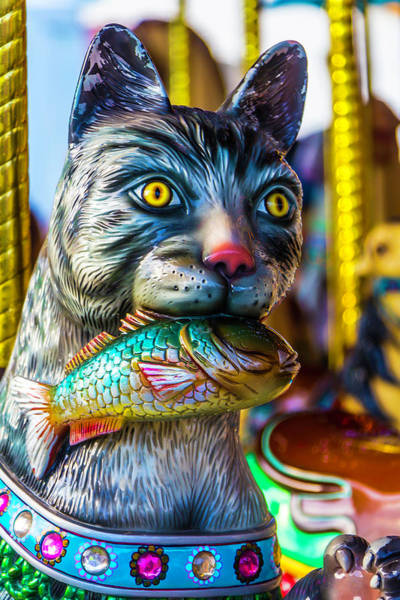 Photograph - Cat Carrousel With Fish by Garry Gay