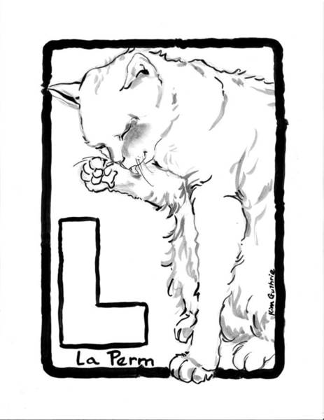 Wall Art - Painting - Cat Drawing La Perm by Kim Guthrie