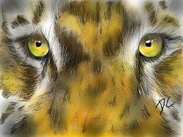Digital Art - Cat Eyes by Darren Cannell