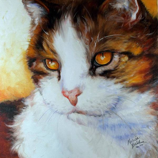 Painting - Cat Eyes Golden by Marcia Baldwin
