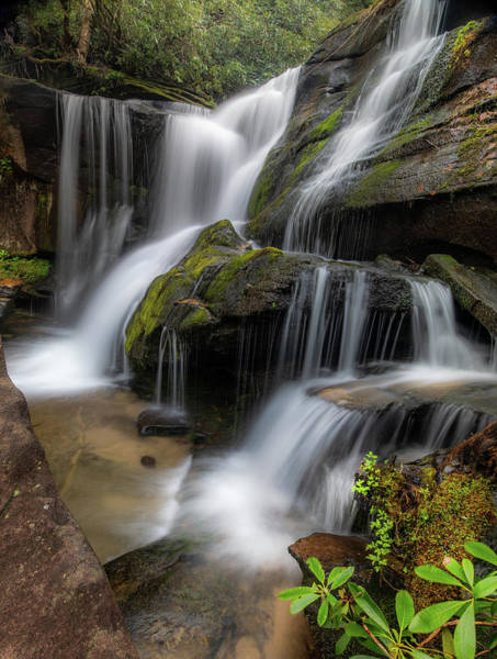 Photograph - Cat Gap Loop Trail Waterfall by Donnie Whitaker