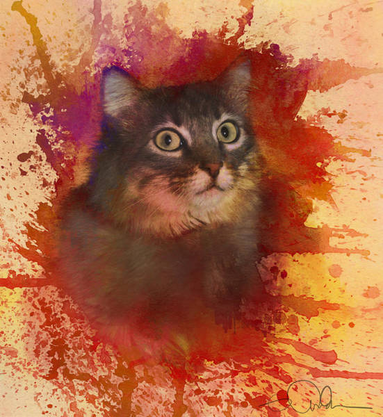 Digital Art - Cat by Gloria Anderson
