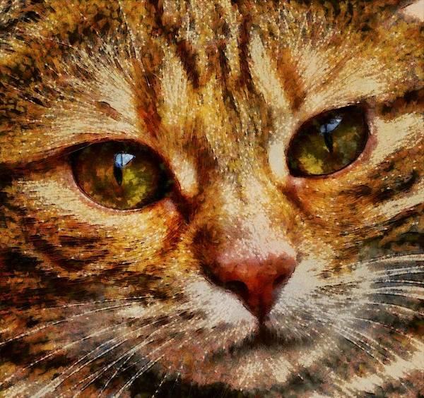 Lurksart Painting - Cat - Id 16218-130641-8659 by S Lurk