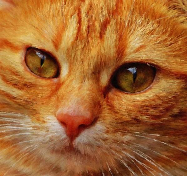 Lurksart Painting - Cat - Id 16218-130645-8619 by S Lurk