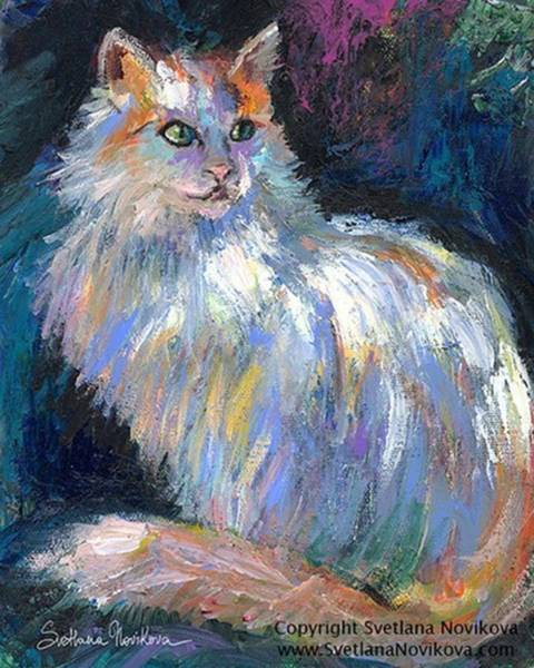 Cat In A Sun Painting By Svetlana Art Print