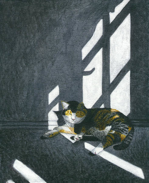Wall Art - Painting - Cat In Empty Room by Carol Wilson