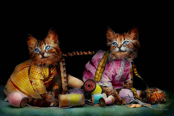 Photograph - Cat - Mischief Makers 1915 by Mike Savad