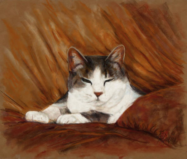 Calico Cat Painting - Cat Nap by Billie Colson