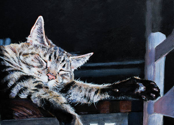 Painting - Cat Nap by Christopher Reid