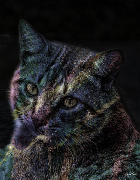 Mixed Media - Cat Of Many Colors Soft by Lesa Fine