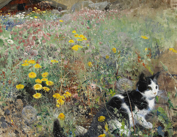 Swedish Painters Wall Art - Painting - Cat On Flowerbed by Bruno Liljefors