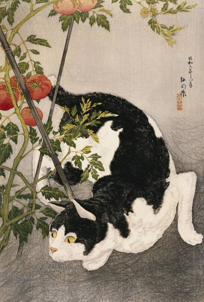 Wall Art - Painting - Cat Prowling Around A Staked Tomato Plant by Takahashi Hiroaki