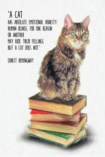Wall Art - Drawing - Cat Quote By Ernest Hemingway by Zapista Zapista