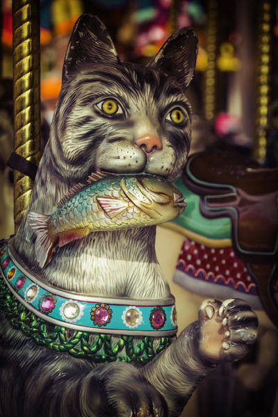 Amuse Photograph - Cat With Fish Carrousel Ride by Garry Gay