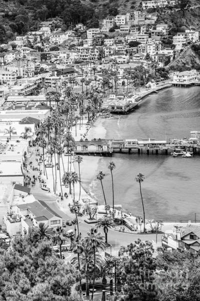Wall Art - Photograph - Catalina Island Aerial Black And White Photo by Paul Velgos