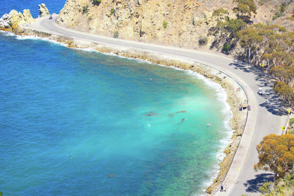 Wall Art - Photograph -  Catalina Island Aerial View by Art Spectrum
